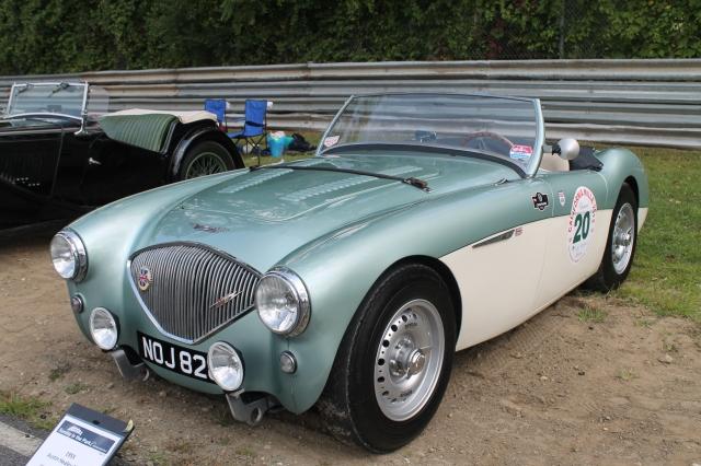 Austin Healey 100-4 1955 (1)