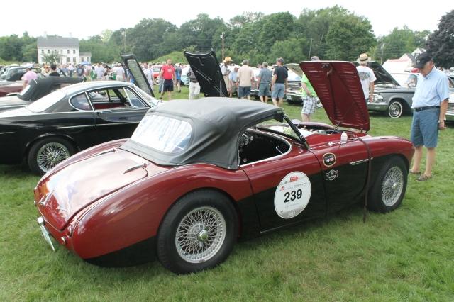 Austin Healey 100M 1954 (1)