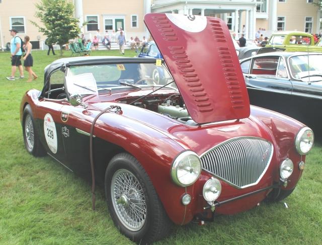 Austin Healey 100M 1954 (2)