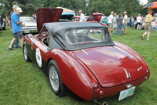 Austin Healey 100M 1954 (3)