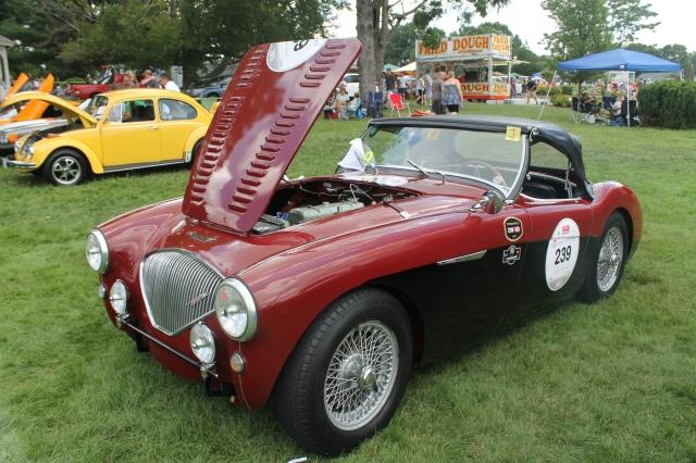 Austin Healey 100M 1954 (4)
