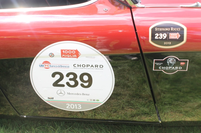 Austin Healey 100M 1954 (9)