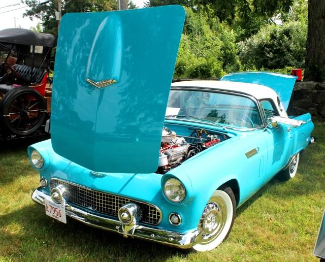 Ford Thunderbird 1956 (2)