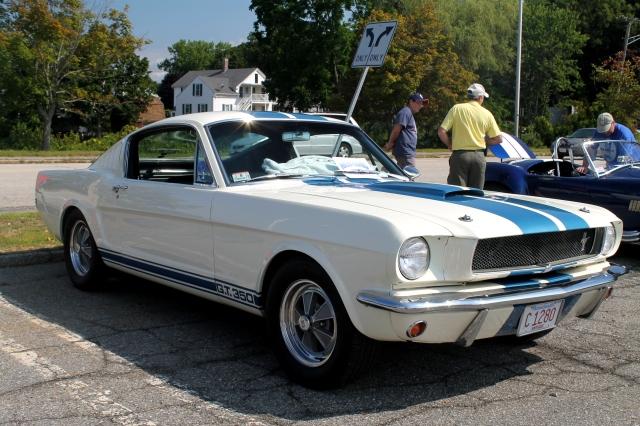 Mustang GT350 1966 (1)