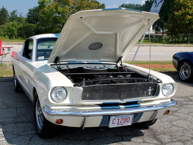 Mustang GT350 1966 (10)