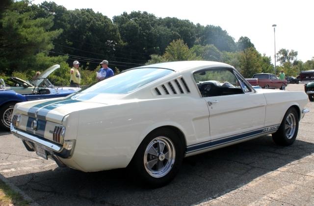 Mustang GT350 1966 (3)