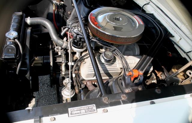 Mustang GT350 1966 (6)