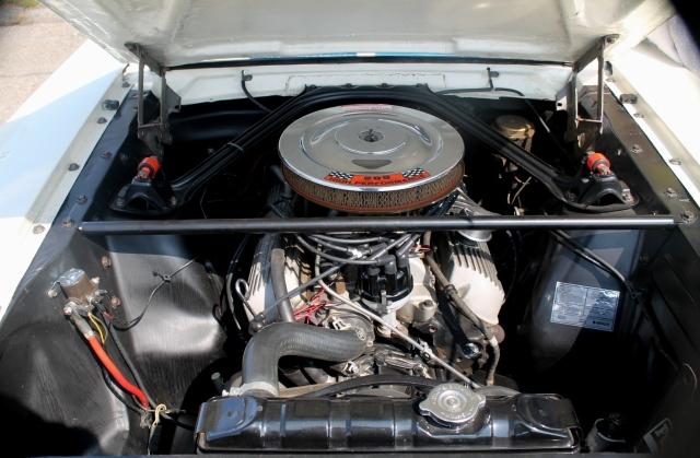 Mustang GT350 1966 (9)