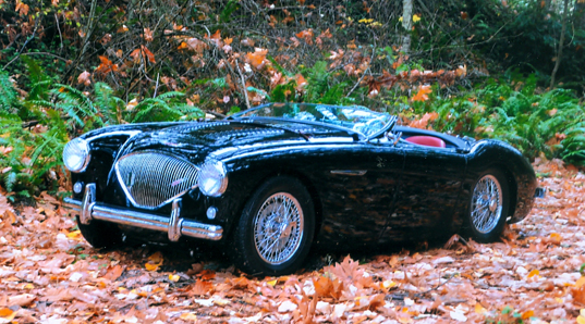 Terry Hall Austin Healey (1)