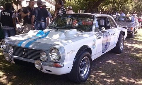Torino Team Cars (1)